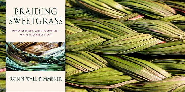 braiding-sweetgrass-w640h320
